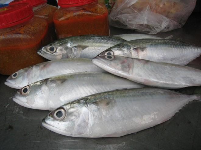 lựa chọn cá những điều cần cân nhắc khi đi mua ngoài chợ