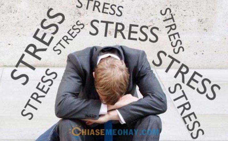 Stress và những điều bạn cần quan tâm