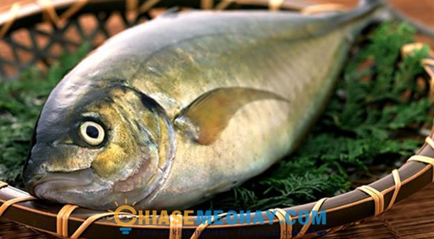 Mắt cá lồi là cá còn tươi