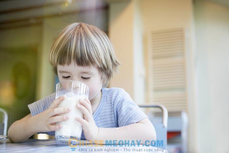 Nên cho trẻ uống sữa dê hay sữa bò?
