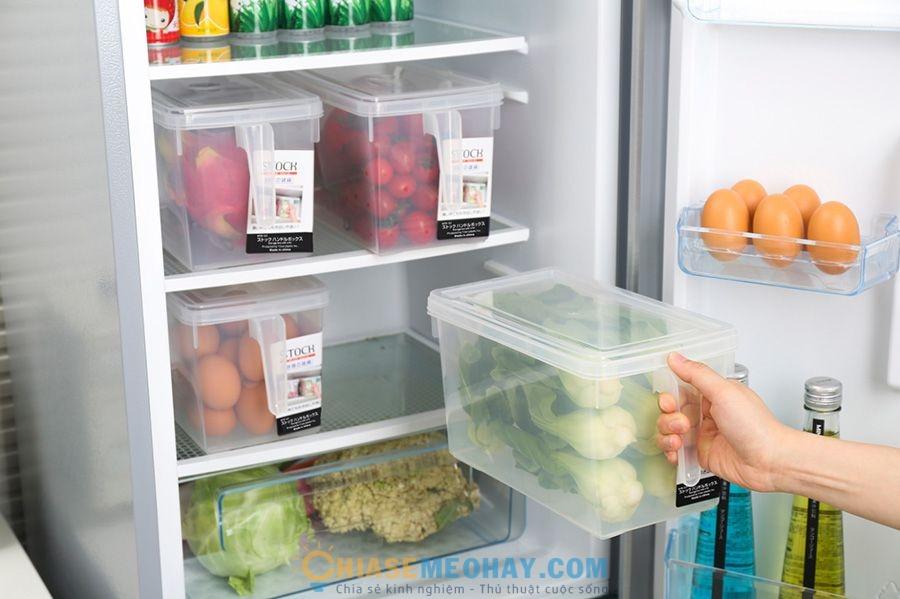 Tủ lạnh là nơi chứa rất nhiều vi khuẩn