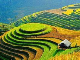 Kinh nghiệm du lịch Hà Giang mới nhất 2020