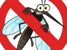 Những đặc tính độc hại của những loại muỗi đốt
